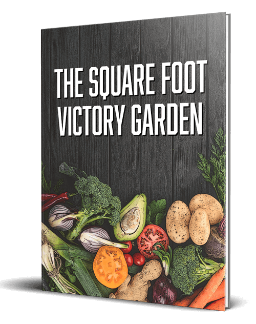 The Square Foot Victory Garden